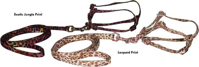 Harness & Leash Set